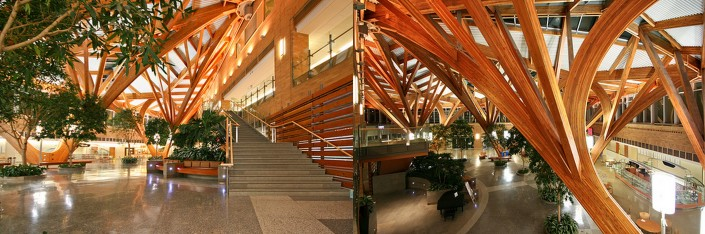 Mississauga Credit Valley Hospital's indoor Nature Valley Walkway--A great example of the use of plants and wooden architecture to bring nature into this lobby space.